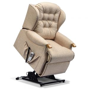 LYNTON Petite 1-motor Electric Riser Recliner - Knuckles Cover - Fabric 1