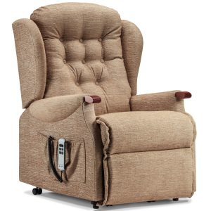 LYNTON Royale 1-motor Electric Riser Recliner - Knuckles Cover - Fabric 1