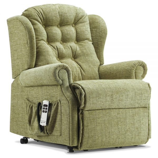 LYNTON Petite 2-motor Electric Riser Recliner Cover - Fabric 1