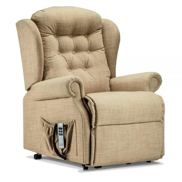 LYNTON Royale 1-motor Electric Riser Recliner Cover - Fabric 1