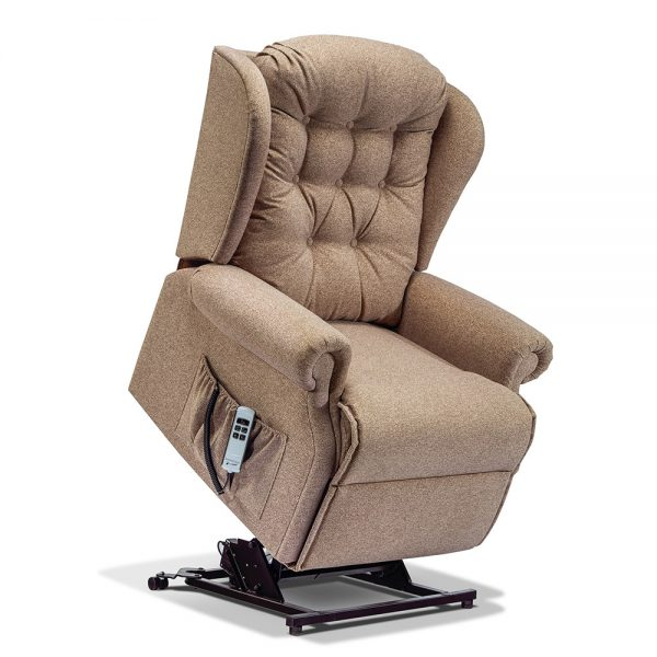 LYNTON Royale 2-motor Electric Riser Recliner Cover - Fabric 1